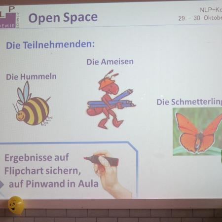 2011 kongress openspace 3