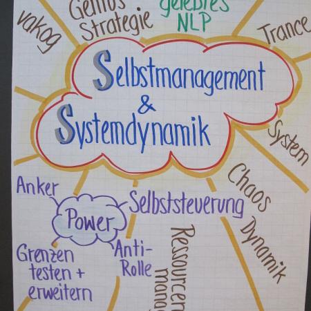 Modul 6 selbstmgt-systemdynamik2